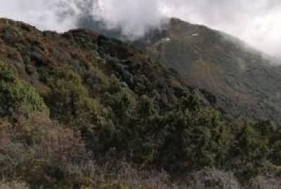 Helambu Trek 5 Days